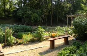 Jardin Kalendula