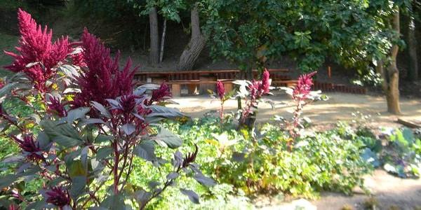 jardin-kalendua-steinfort